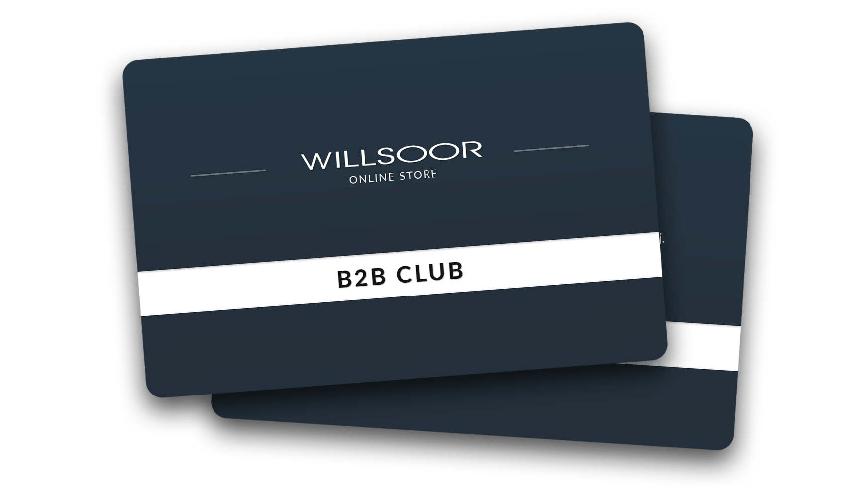 Willsoor B2B Club
